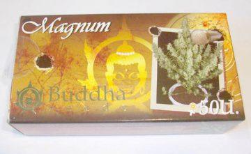 Magnum Buddha Seeds Estepona