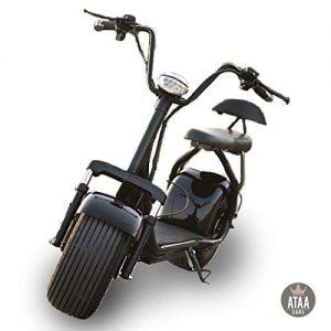 Patinete moto eléctrico Biplaza